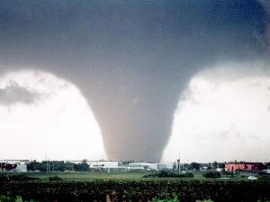 Probably the most famous shot of the Edmonton tornado. Source: Google images.